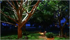 Dallas Landscape Lighting Dallas Landscape Lighting Inviting Moonlighting Tree Lighting