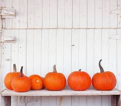 is bilo open on thanksgiving bristol farms home facebook