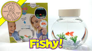 fincredibles electronic pet fish swims like the real thing