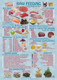 pin by chelle on staffy love pinterest dog food raw dog food