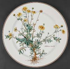 villeroy boch botanica at replacements ltd page 1