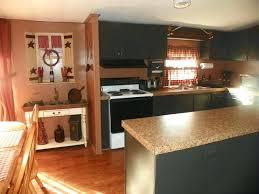 Primitive Kitchen Ideas Primitive Kitchen Cabinet Exle Of A Classic Kitchen Design In