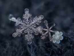 snowflakes snowflakes macro shot february 2012 backgroun u2026 flickr