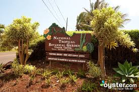 Botanical Gardens Hotel National Tropical Botanical Garden Kalaheo Kauai Hawaii