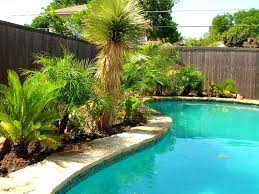 landscaping ideas backyard furniture fascinating images about pool landscaping ideas