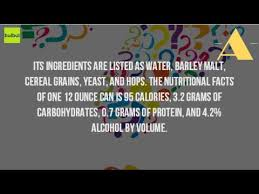 busch light calories and carbs how much alcohol is in a natural light youtube