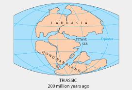 pangea supercontinent pangaea supercontinent