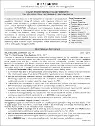 Resume Samples It by Resume Sample 1 It Executive Resume Career Resumes