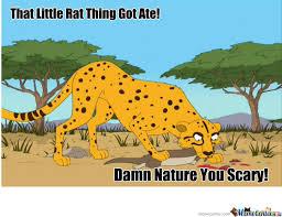 Damn Nature You Scary Meme - damn nature you scary by thetriforce meme center