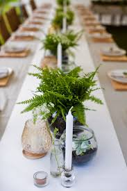 Centerpiece For Table by Plant Centerpieces For Tables Home Design Ideas