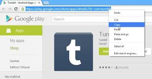 play apk downloader easily the apk of any free android app from play store
