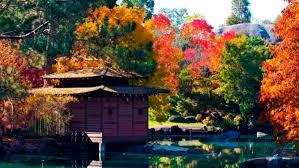 Auburn Botanical Garden Auburn Botanic Gardens 2017 Open Day Ellaslist