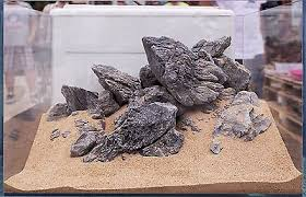 aquascaping layouts with stone and driftwood aquascaping ada seiryu stone rock aquarium tropical fish plant