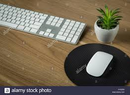 clean wooden desk with keyboard mouse and tiny aloe vera plant