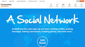 30 best buddypress themes create and code