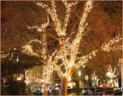 outdoor tree lights uk special offers tasmim