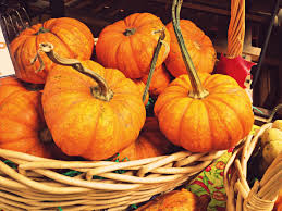 3 and easy healthy pumpkin recipes for thanksgiving