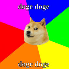 What Is Doge Meme - doge doge doge doge meme meme rewards