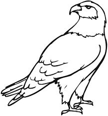 eagle coloring pages olegandreev me