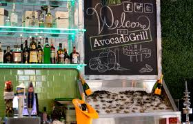 The 10 Best Delray Beach Restaurants 2017 Tripadvisor Avocadogrill101514 046 Jpg Format U003d2500w