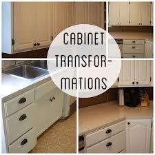 Paint Kits For Kitchen Cabinets Kitchen Cabinet Paint Kit