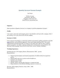 sle cv sle resume sle cv quantity surveyor for civil ideas sle x