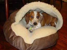 design cozy cave dog bed the best quality cozy cave dog bed