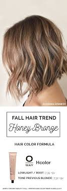ways to low light short hair 284 best hair styles images on pinterest hair colors hair cut