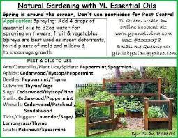 Gardening Pest Control - young living essential oils garden pest control lisa krznarich