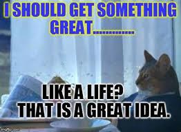 Cat Meme Boat - th id oip 6vnnla3upbhy6nra28bhiqhafc