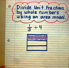 divide unit fractions by whole numbers area model youtube