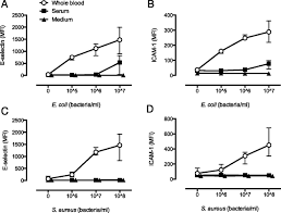 human endothelial cell activation by escherichia coli and