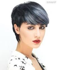gray hair streaked bith black black hair with gray streak grey more halloween hair pinterest