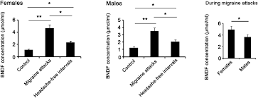 involvement of bdnf trkb and erk creb axes in nitroglycerin