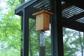 Homemade Garden Box by How To Make A Carpenter Bee Trap Hgtv