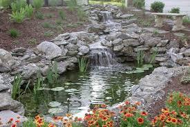 streams neave aquatics