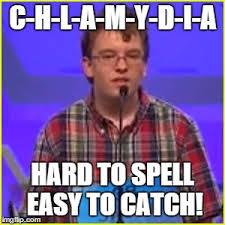 Spelling Meme - spelling bee imgflip