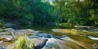 Tennessee wild swimming images Flat rock wild swimming australia jpg