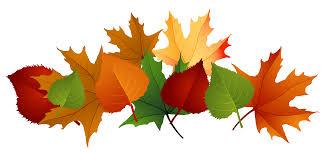 fall leaves clip border free clip decoration