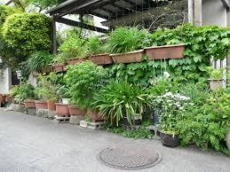 Urban Garden Santa Rosa Diy Wall Planters Outdoor Http Lovelybuilding Com Suitable