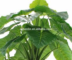 Plants For Office Indoor Outdoor Fake Artificial Scindapsus Floor Plants For Office