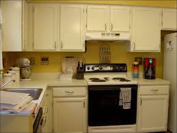 Light Green Kitchen Cabinets Kitchen Kitchen Colour Combination Great Kitchen Colors Grey And