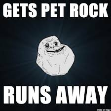 Pet Rock Meme - lonely meme on imgur