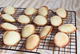 seashell shaped cookies kitchen experiments madeleine cookies a beautiful mess