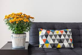 What Is Home Decoration Skye Home Staging