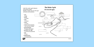 water cycle labelling activity sheet spanish translation