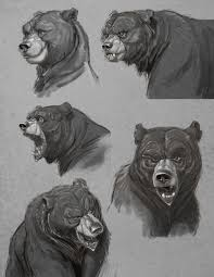aaron blaise cartoon animal reference bear sketch