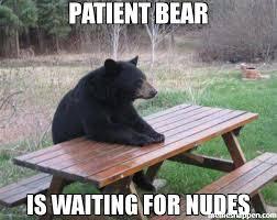 Patient Meme - patient bear is waiting for nudes meme bad luck bear 48877 page