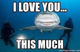 I Love You This Much Meme - i love you this much sharky meme generator