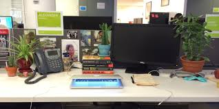 everyone with a desk job should have plants huffpost